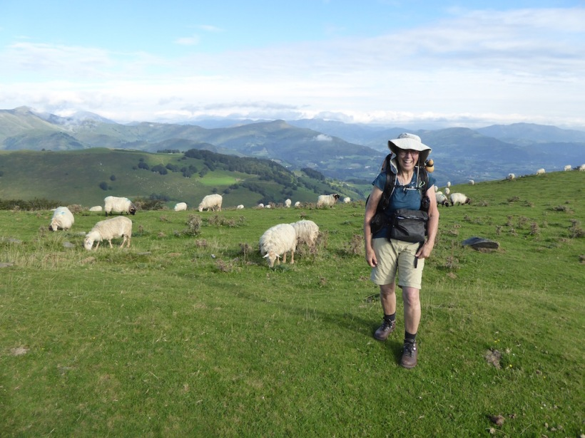 I stood with the sheep in the Pyrenees.