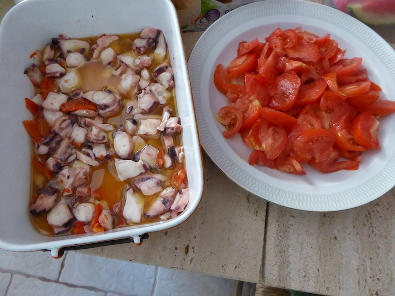 Part of our lunch was squid, octopus , and tomatoes.