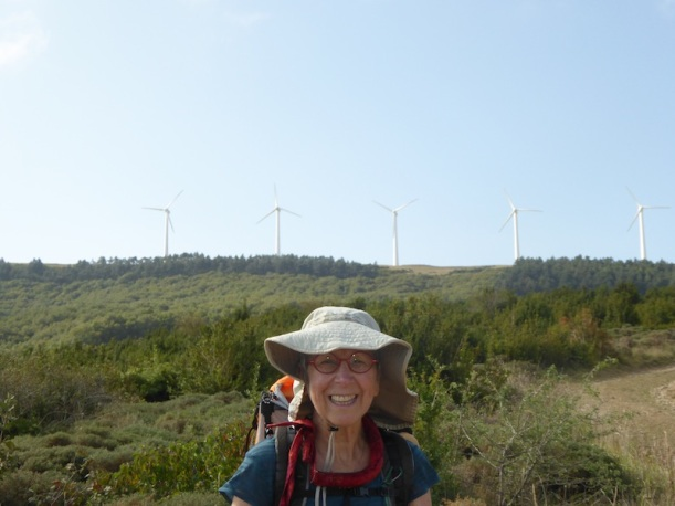 There were wind turbines in view.