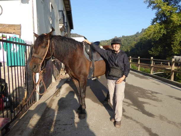 Nancy's Horse