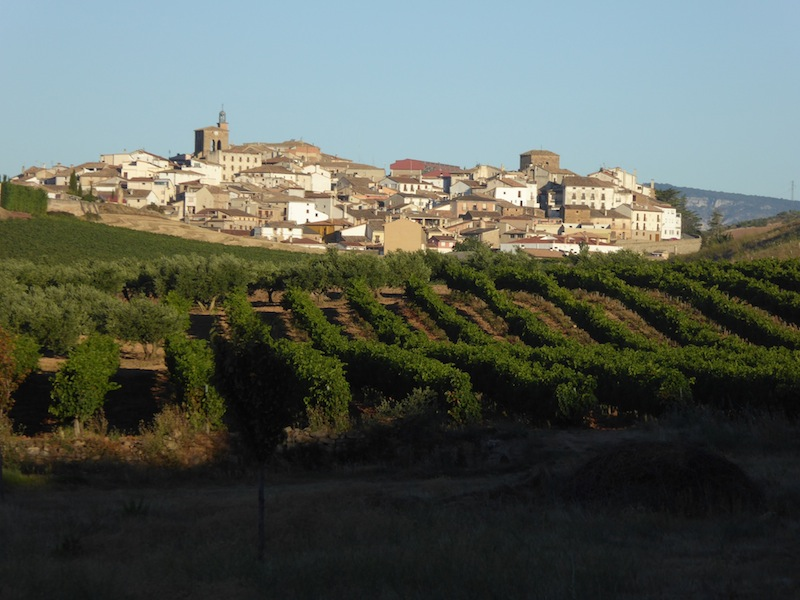 I loved the view of Cirauqui from a distance looking over the fields of grapes.