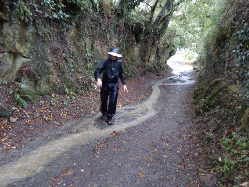 Sloshing through puddles