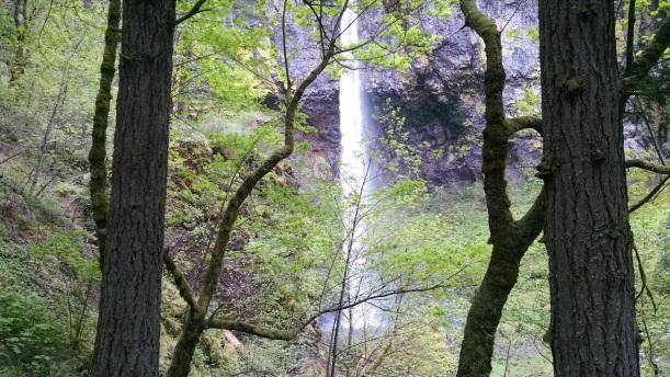 Elowaa Falls - Oregon.