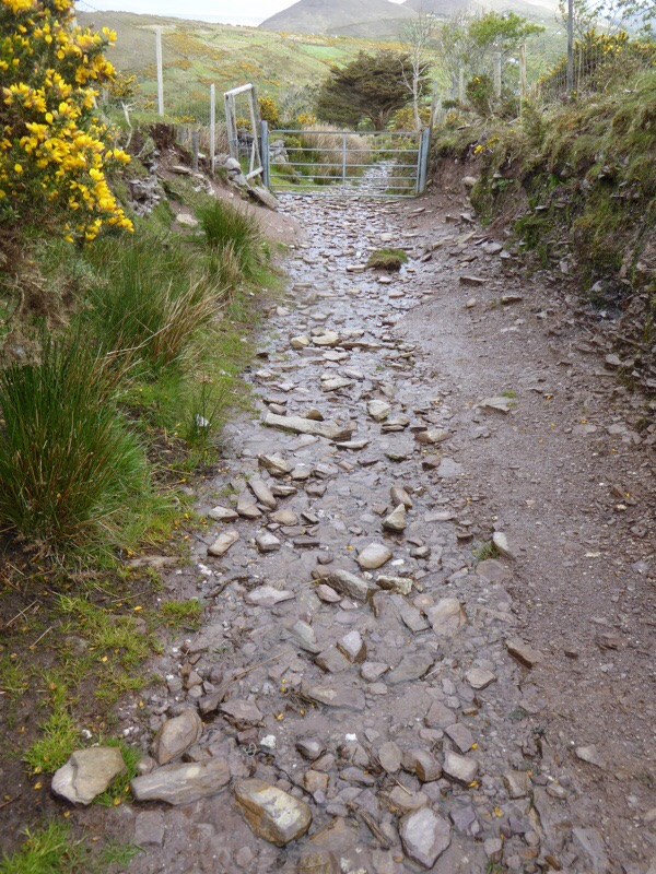 We walked up the streambed.