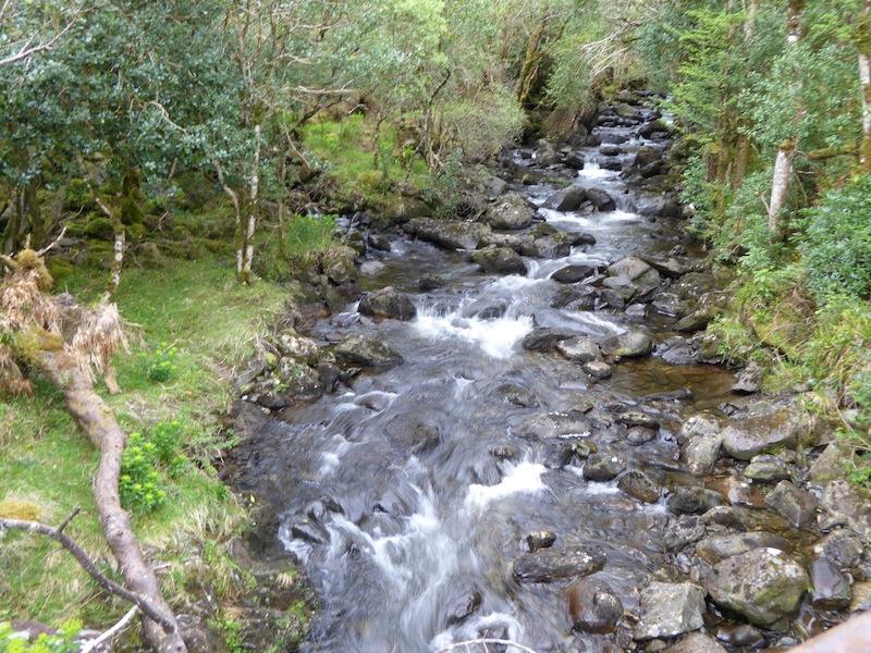 We walked by rushing streams in Black Valley.