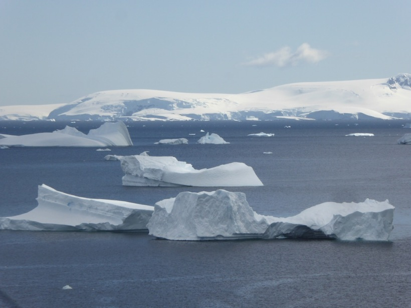 These are icebergs seen from Damoy Point.
