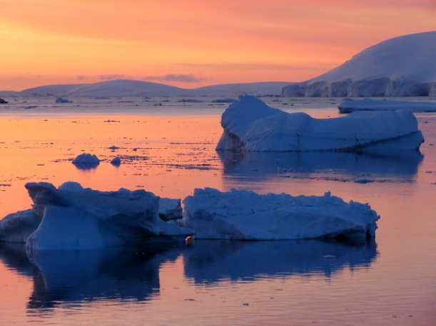 These icebergs are so beautiful in the sunset.
