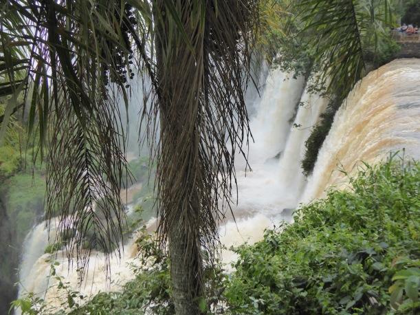 Iguazú Falls 5