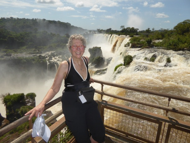 A photo of Nancy at the falls.
