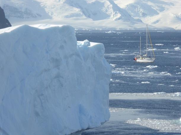The Ocean Tramp sailboat went passed us.