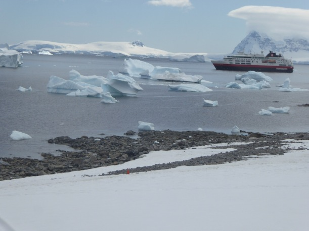See the views of the icebergs from the top at Cuverville.