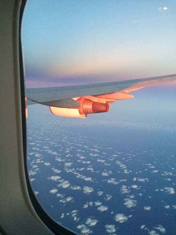The wing is glowing in the sunrise.