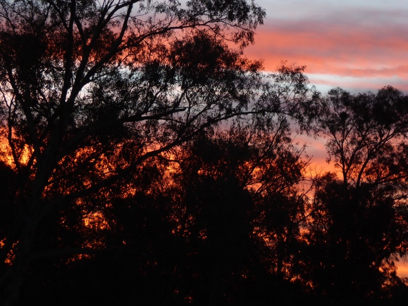 This is the sunset in Alice S;rings.
