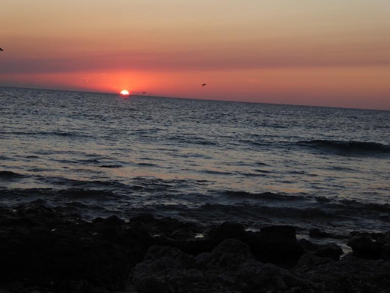 A sunset on Lady Eliot Island