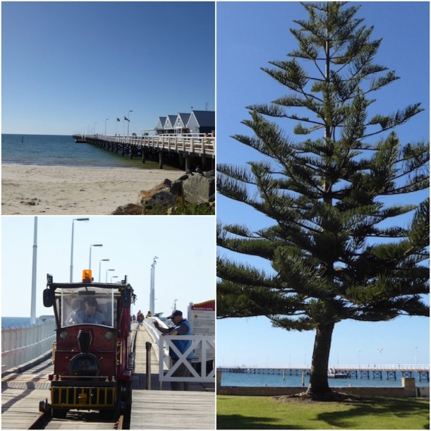 busselton-jetty-collage