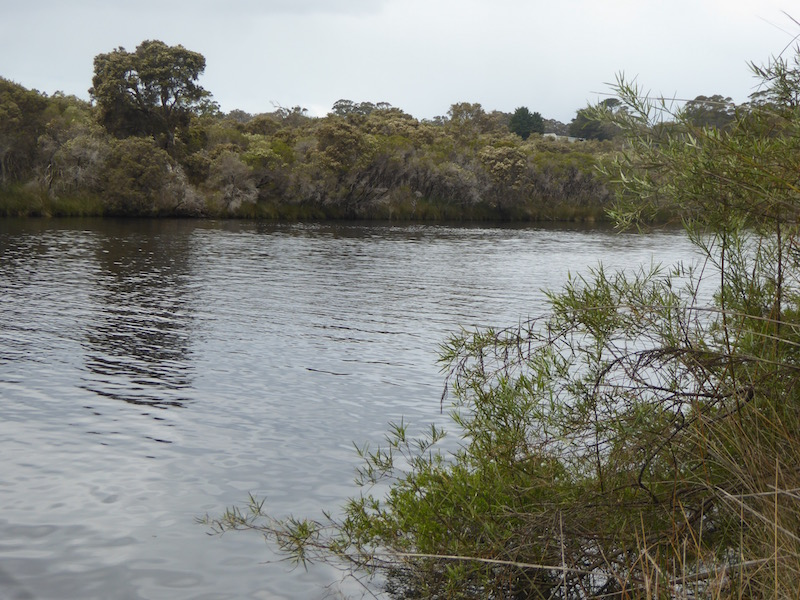 morning-tea-spot-on-norolup-river