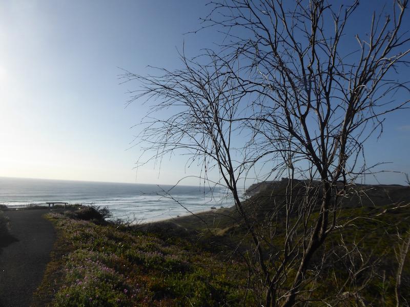ocean-view-3