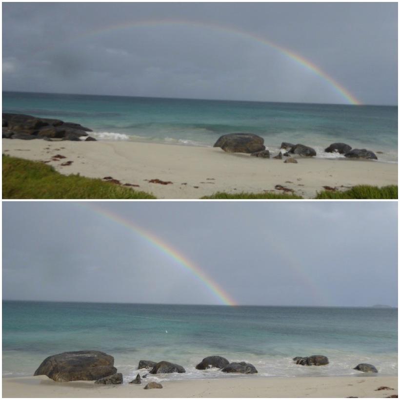 rainbow-collage