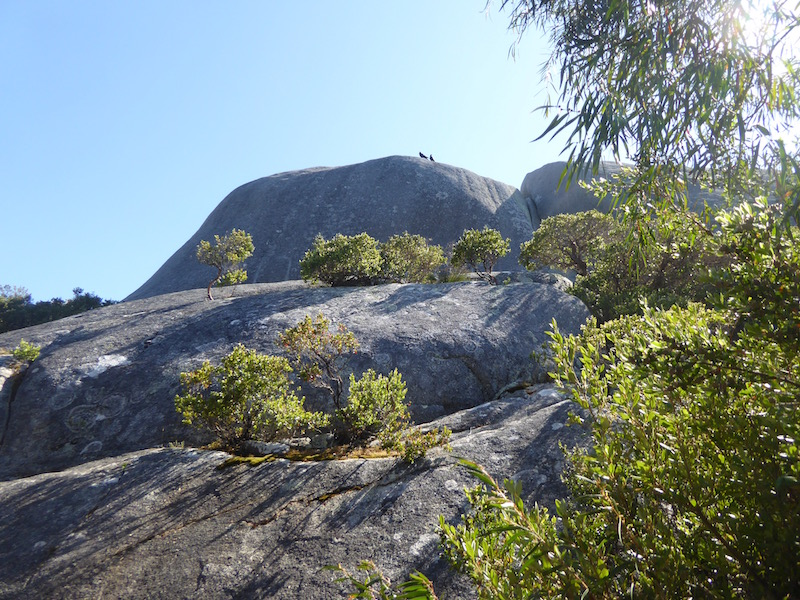 rocks-along-walk-to-middleton-bay