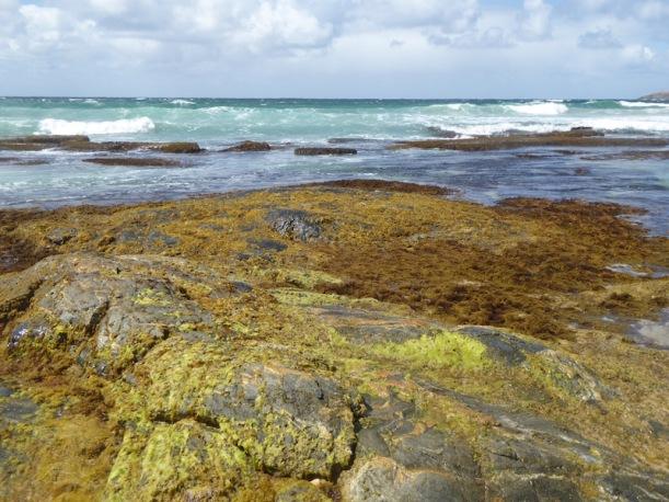 rocks-at-hillier-beach