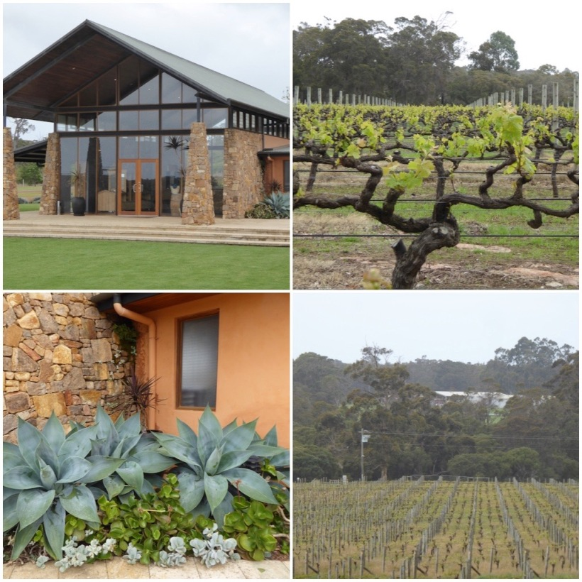 watershed-winery-collage