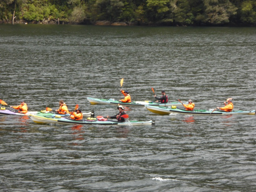 10-kayakers