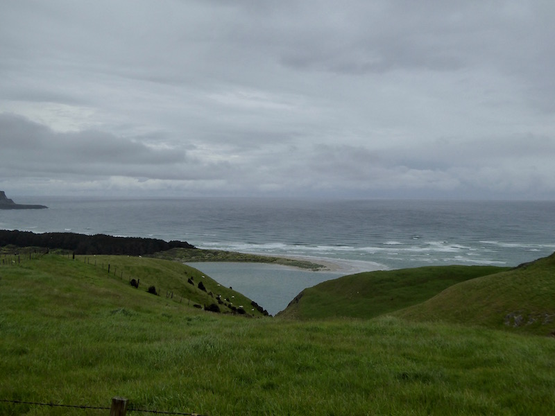 Papanui Inlet into-Wickliffe Bay