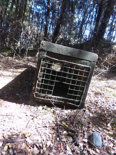 19-trap-box