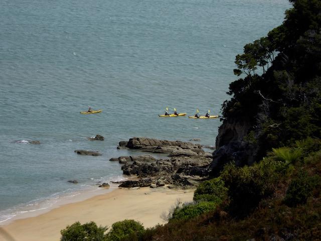 21-kayakers