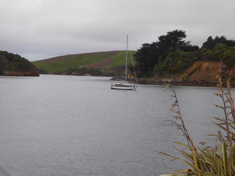 4-boat-in-broad-bay-jpg