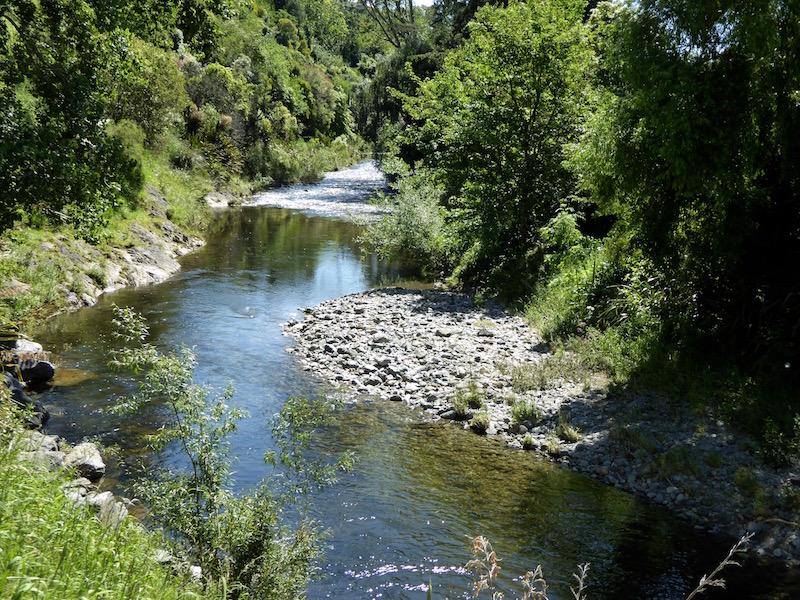 5-maitai-river-walk
