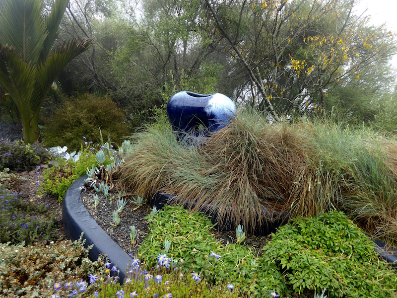 blue-open-vessel-in-plants