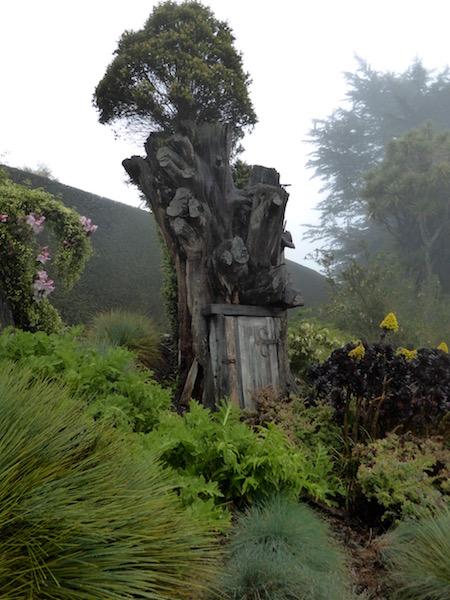 door-in-tree-trunk