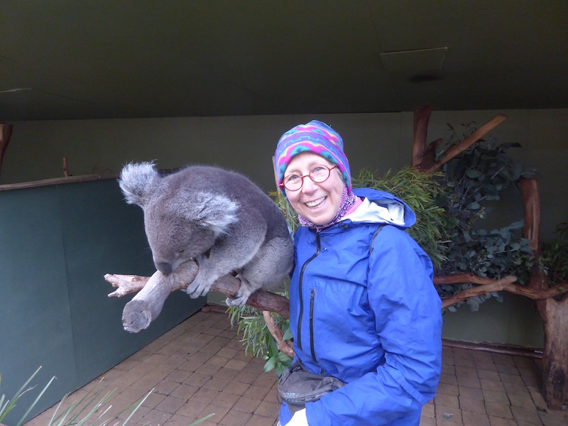koala-and-nancy