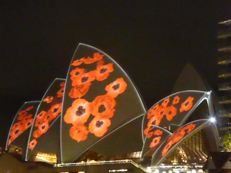 poppies-on-opera-house