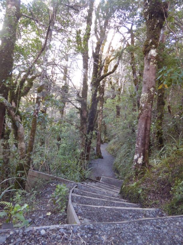 15-hike-to-taranaki-falls