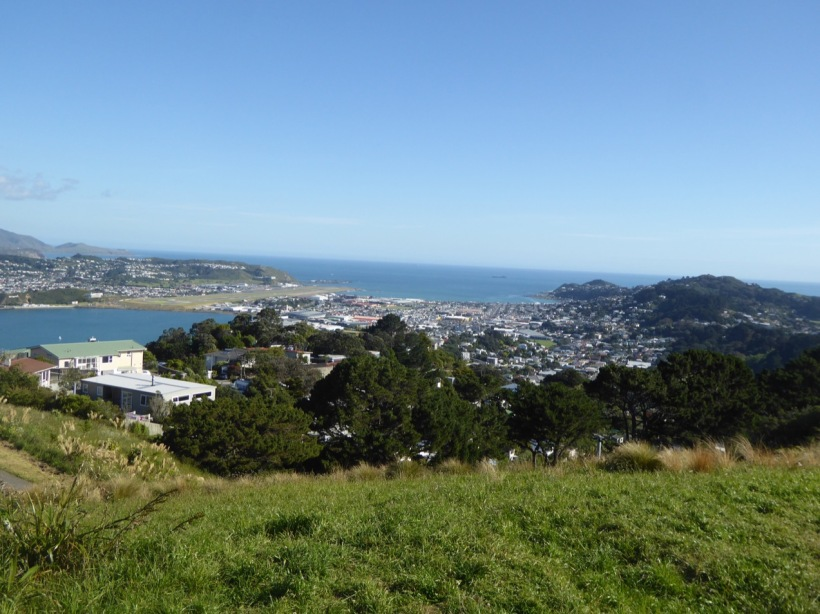 24-evans-bay-and-lyall-bay-from-mount-victoria-lookout