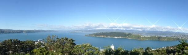 26-panorama-of-evans-bay
